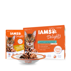 IAMS Delights Land Collection in Gravy 12x85g