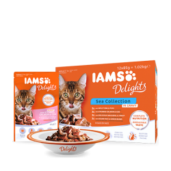 IAMS Delights Sea Collection in Gravy 12x85g
